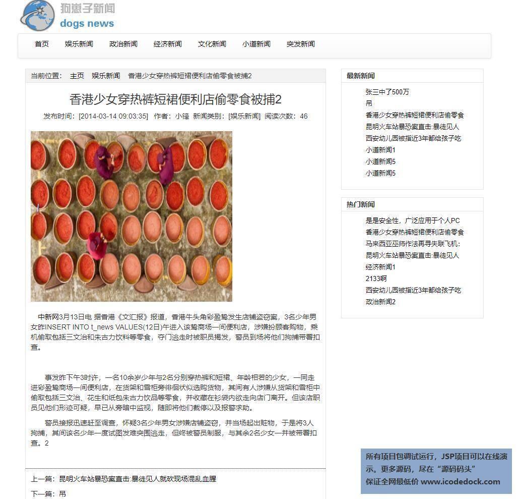 源码码头-JSP新闻发布网站系统-用户角色-查看新闻详情
